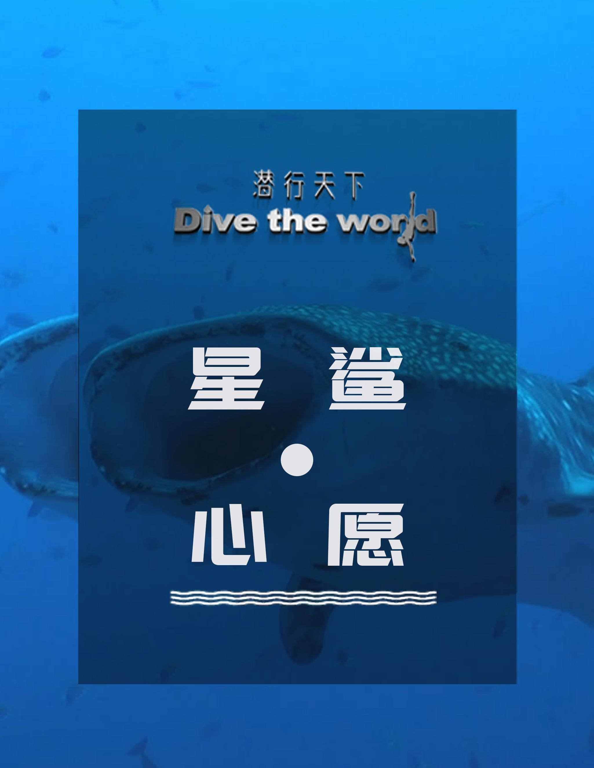 潜行天下纪录片 第二季:潜行世界各地,只为与鲸鲨的再次邂逅