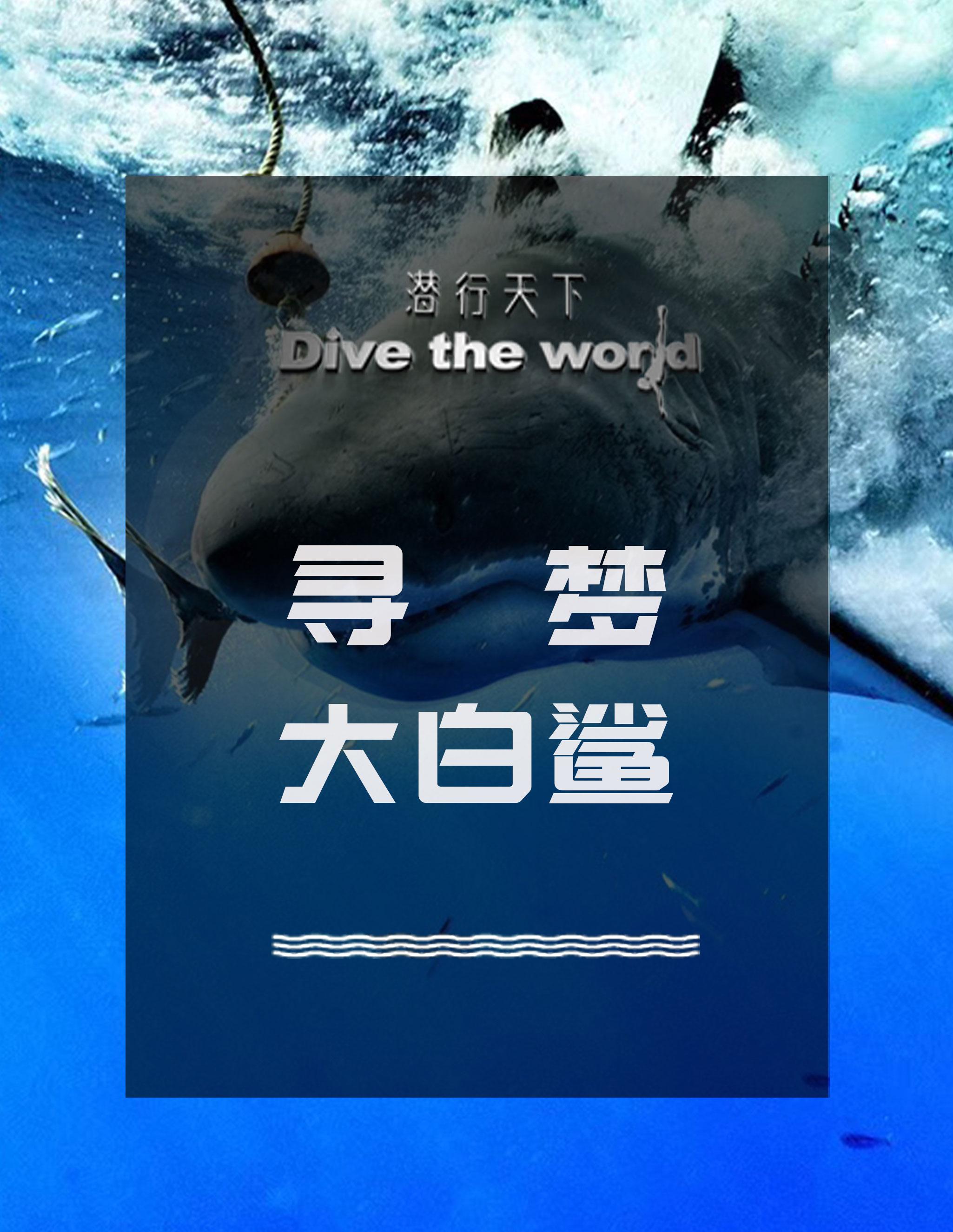 潜行天下纪录片 第二季:瓜达卢佩,一起寻找海底世界的至尊统治者大白鲨!