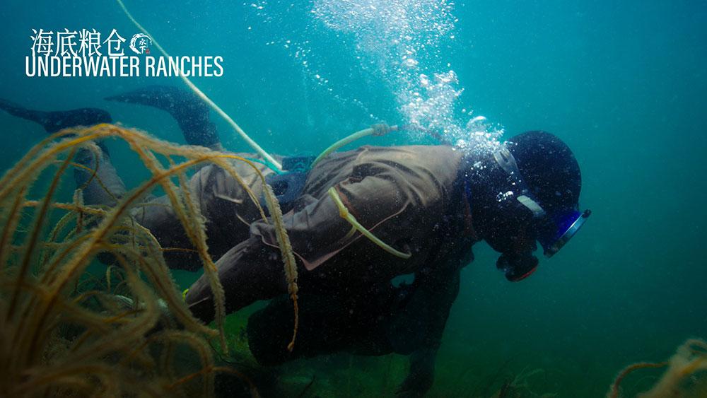 水下中国 : 第6集 海底粮仓