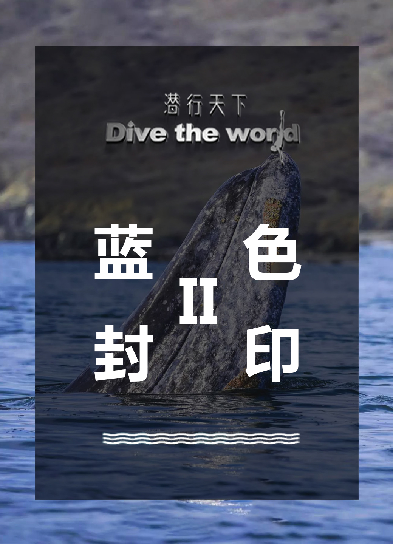 潜行天下纪录片 第二季:卧底捕鲨船,是谁让屠刀一次次对蓝色生命挥起